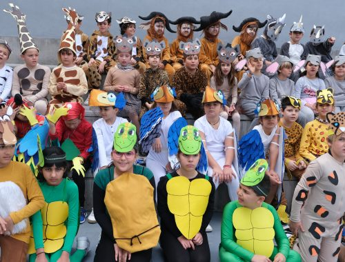 Fiesta carnaval colegio
